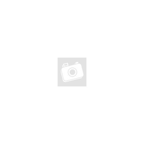 Ezüst és arany színű, kör alakú bika horoszkóp nemesacél medál
