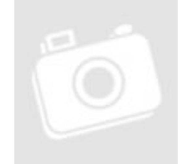téli gondoskodás a kutyákról